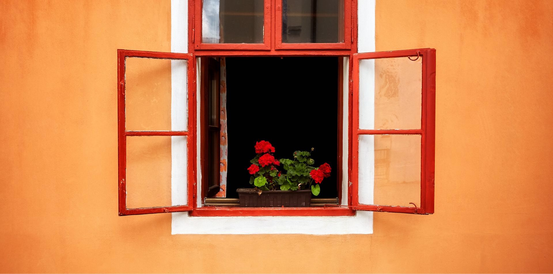 Red window and flower box