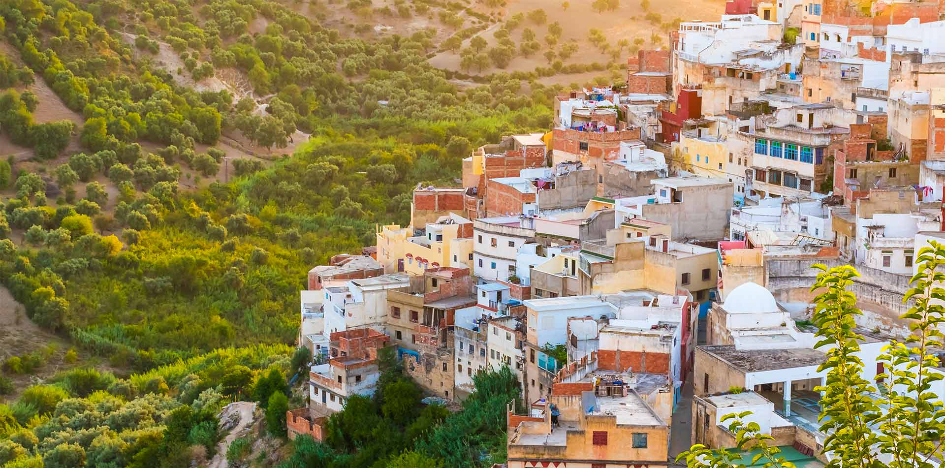 Africa Morocco Moulay Idris historic colorful holy city aerial view at sunset   - luxury vacation destinations