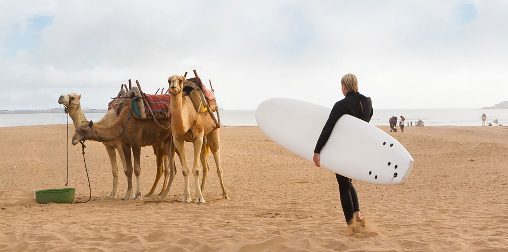 Africa Morocco Essaouira man walking carrying surfboard at beach in tan sand by camels resting - luxury vacation destinations