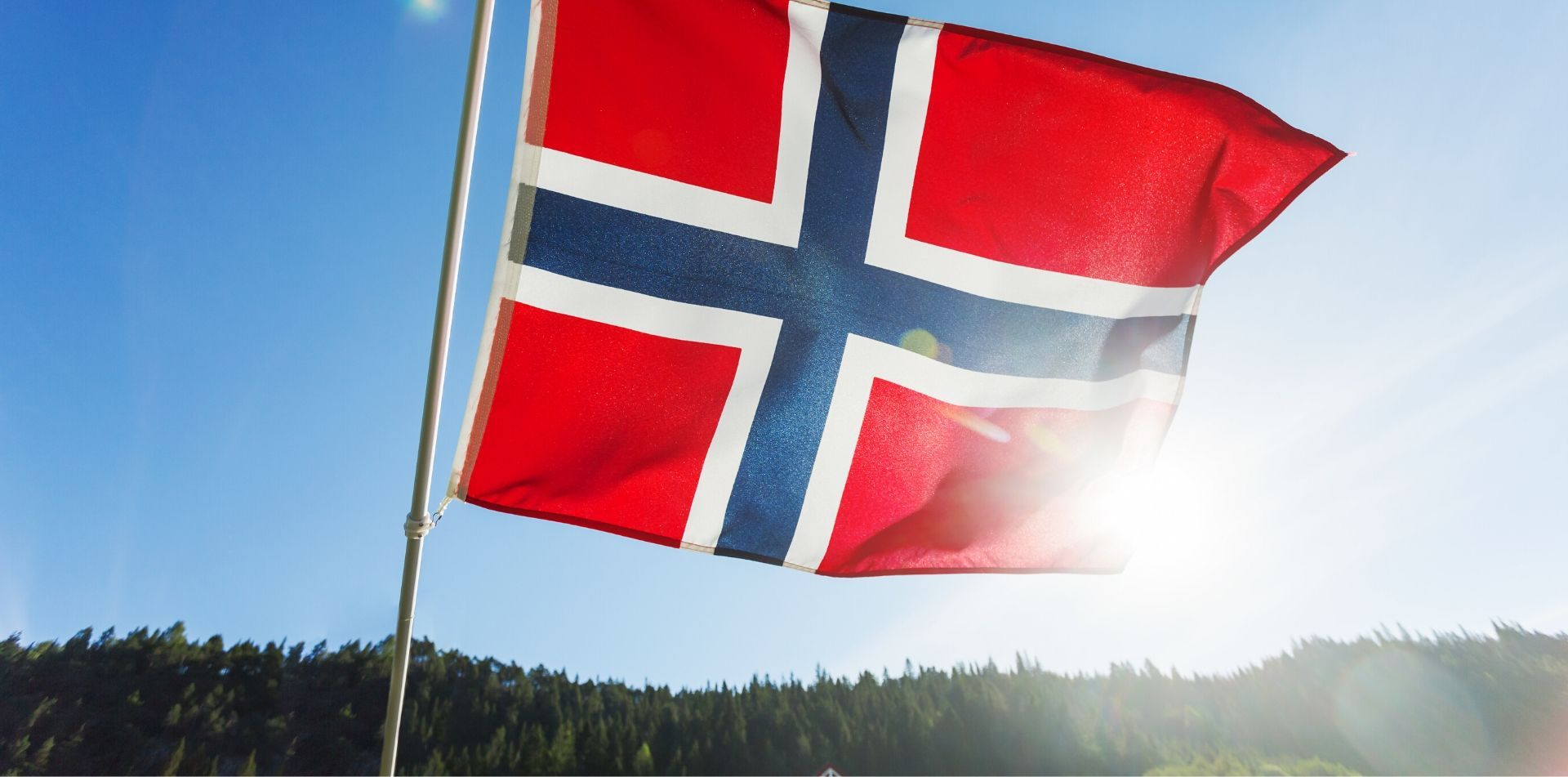 Europe Norway flag blowing in the wind in front of treeline - luxury vacation destinations