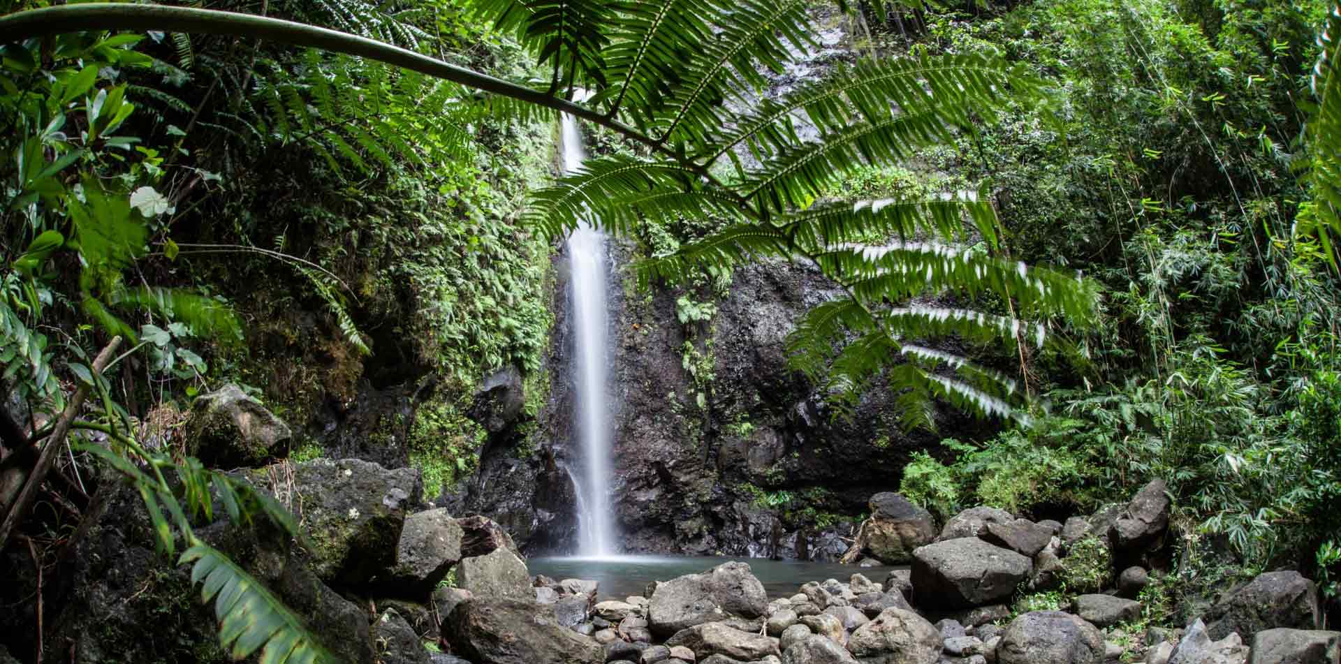 South Pacific Tahiti scenic waterfall lush rocky jungle hike adventure - luxury vacation destinations